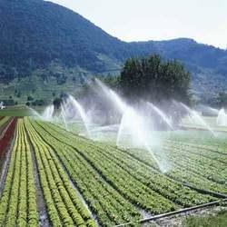 Irrigation 3